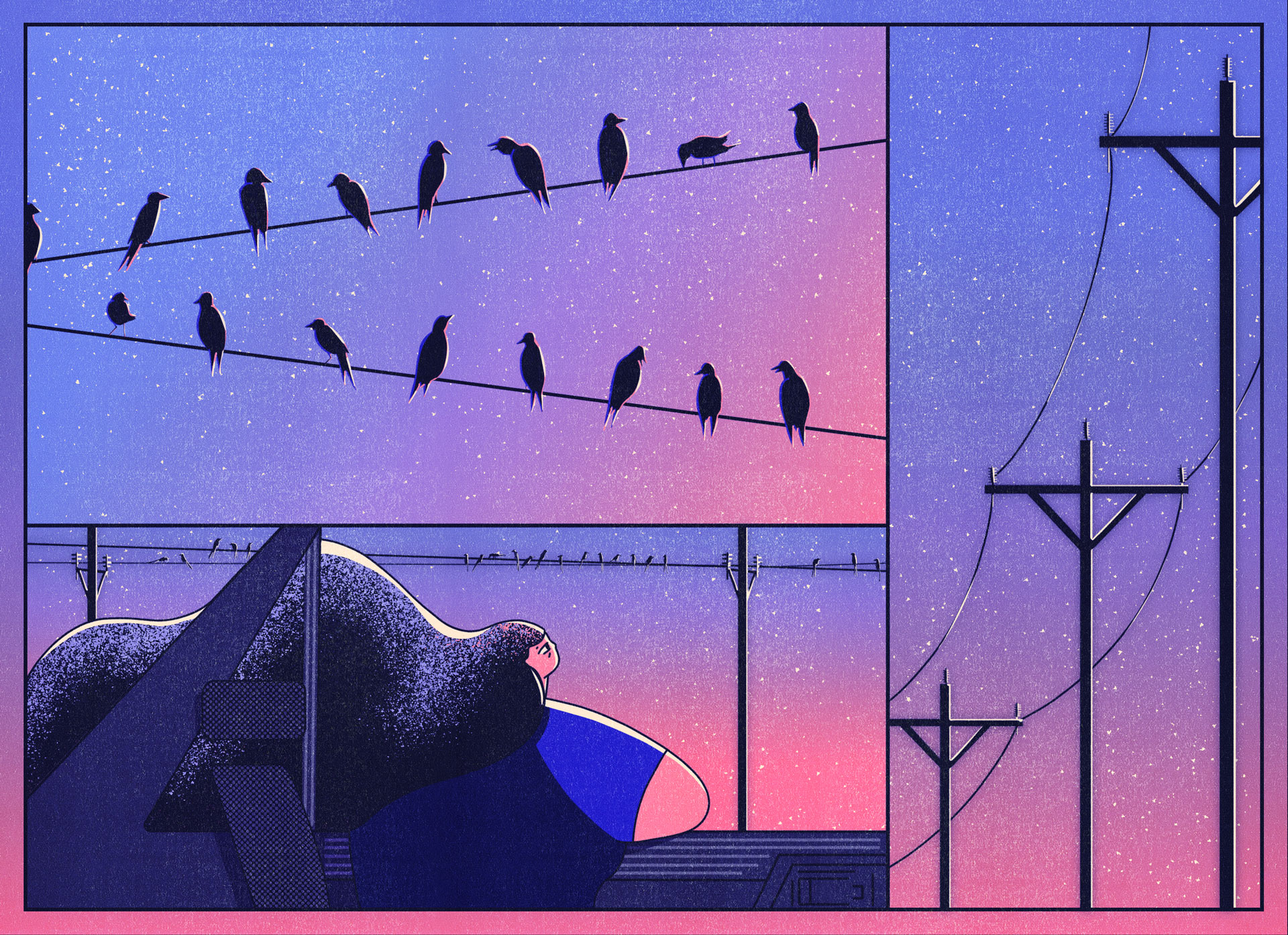 3.birds
